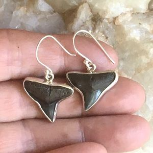 Jewelry - Fossil shark's teeth 925 sterling silver earrings